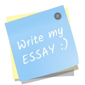 write my essay